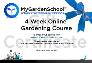 Example of Gardening Course Gift Certificate.