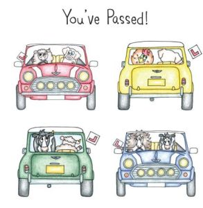 you've-passed-mini small