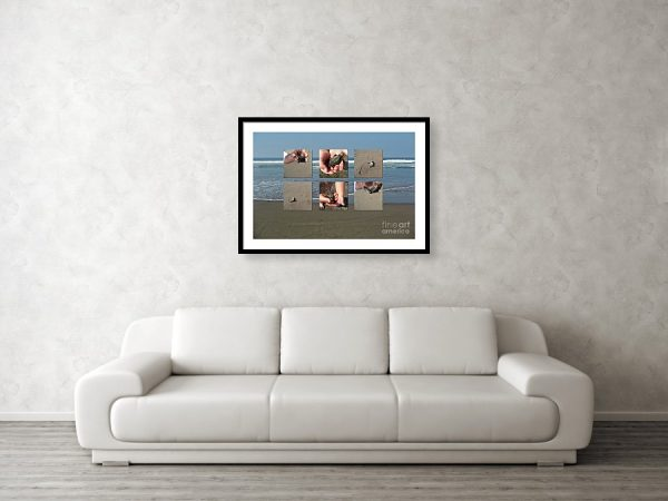 Releasing baby turtles into the water - art framed print by Tatiana Travelways