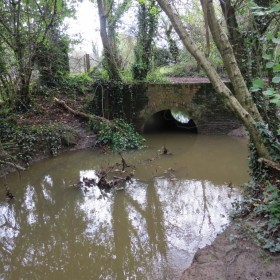 Monktonmead Brook