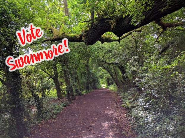 Vote Swanmore!