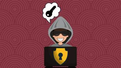 A Hacker's Guide to Internet Safety and Cybersecurity
