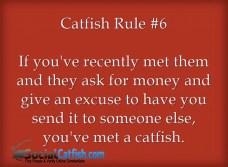 catfish-rule-6