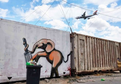 interactive-elephant-street-art-falco-one-south-africa-9