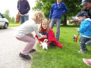 Und wieder hat Julia einen wirklich kleinen Hund gefunden zum Schreichln...