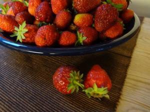 Erdbeeren, Erdbeeren, Erdbeeren...
