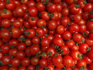 Tomaten, Tomaten, Tomaten...