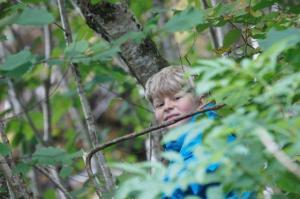 ... und wenn immer möglich hoch im Baume...