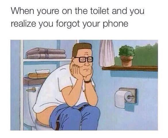 toilet-forgot-phone