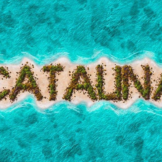 Catalina-2