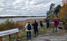Kvarnberget bjöd på vacker utsikt över Hjälstaviken. Dessutom bjöd den på en pilgrimsfalk i ögonhöjd!