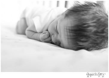 Gigi's Joy Photography: Union Grove Lifestyle Documentary Newborn