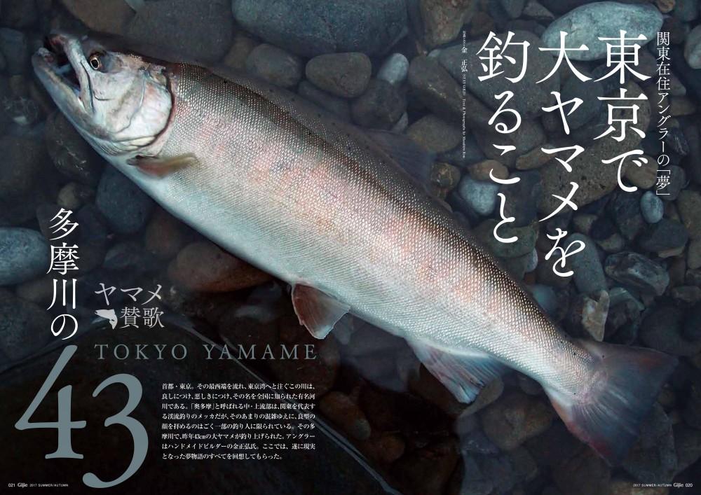 『Gijie2017夏・秋号』の見どころ