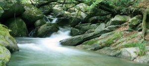 gijie_riverfishing