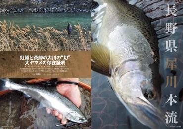 犀川に在来の40ヤマメを求めた須澤康一氏の力作。