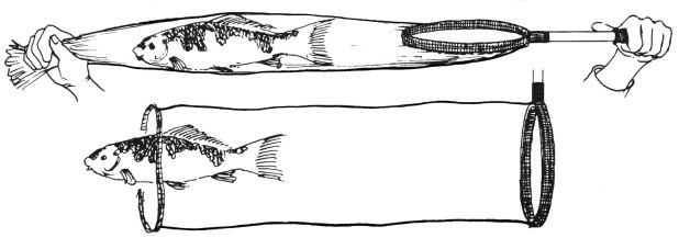 jaring ikan koi