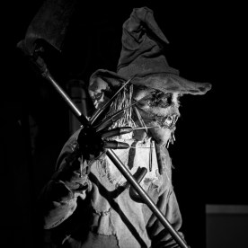 Scarecrow (L'Epouvantail) from Batman - Cosplay facts 2010 - Photo : Gilderic