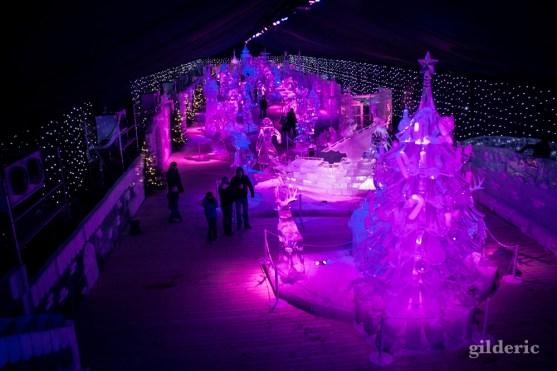Disneyland Ice Dreams - Photo : Gilderic
