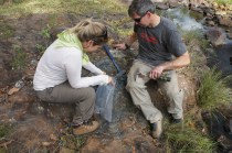 Collecting Archean pyrite