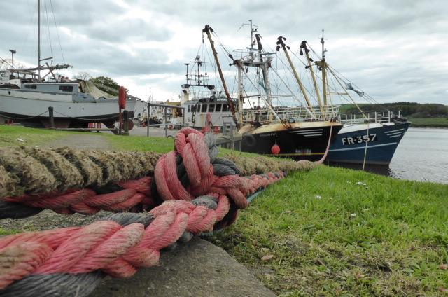 Kirkudbright harbour (working still)