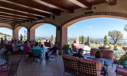Daou Winery and Carmel's storied 17 Mile Drive