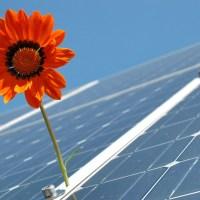 Nouvelle victoire pour les victimes du Photovoltaïque