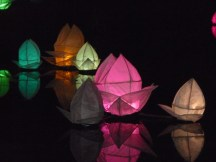 Lanterns on Mansion Pond 3