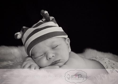 Baby Max