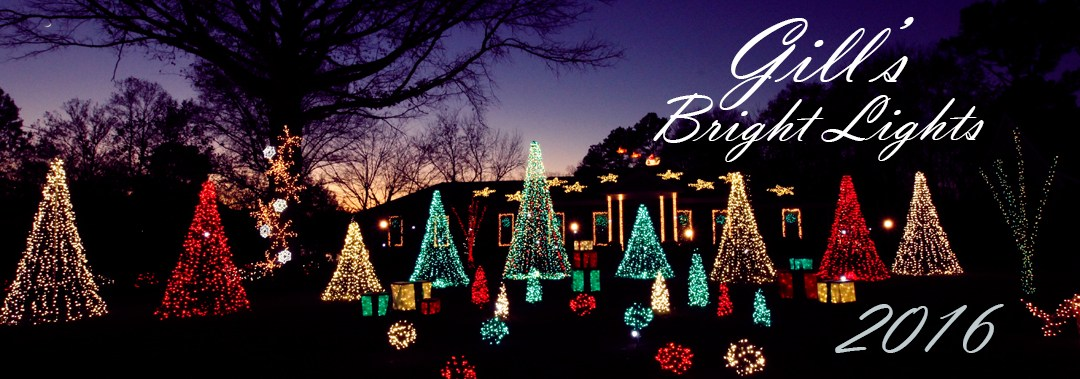 Gill's Bright Lights 2016 Display
