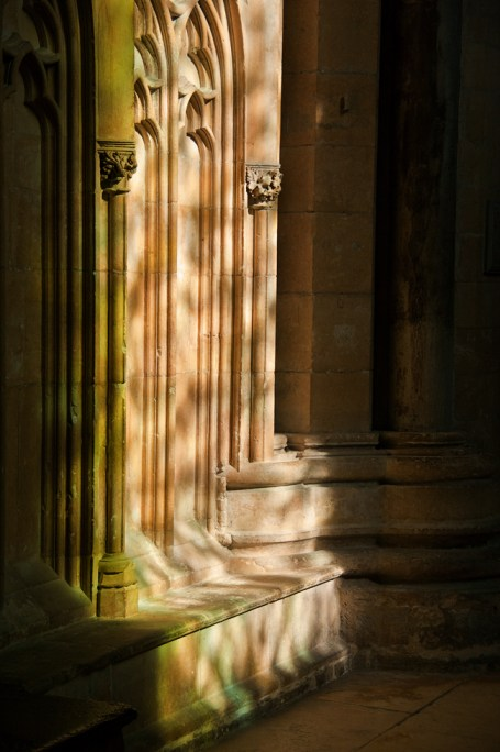 Dappled, Lincoln Cathedral