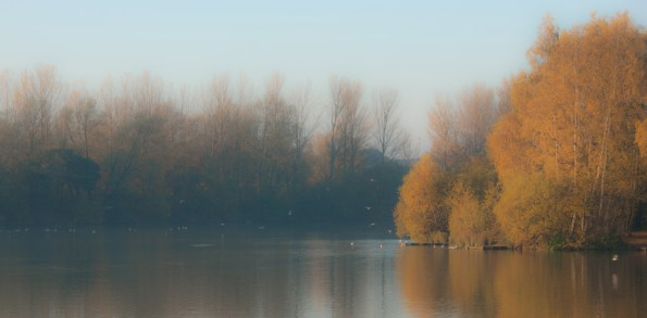 Autumn lake, Balderton Lakes, Newark, letterbox crop