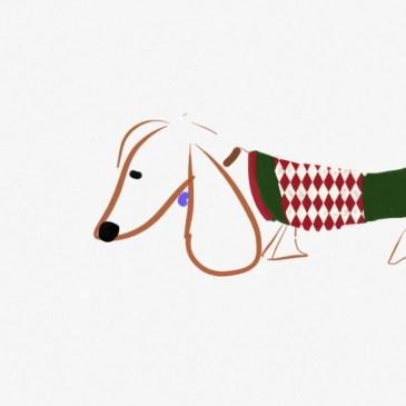 san diego sweater