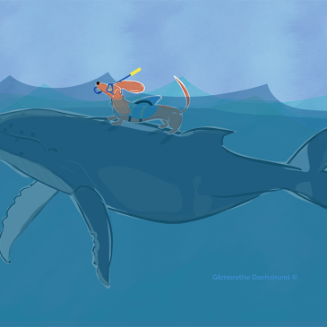 a whale of a day