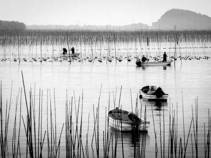 Matsushima en paix