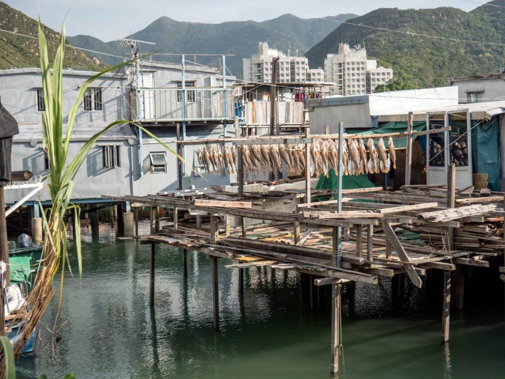 Séchage du poisson à Tai O