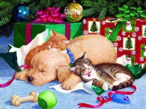 В преддверии праздников хочется в очередной раз поднять такую тему, как Новый Год и домашние животные, и вкратце рассказать, чем опасен этот праздник.