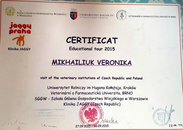 Сертификат о прохождении зарубежной практики в Европе выдан Михайлюк Веронике.