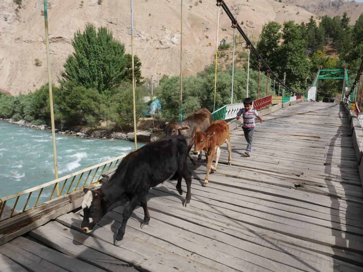 Schussfahrt nach Dushanbe