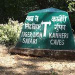 Tiger oder Höhle