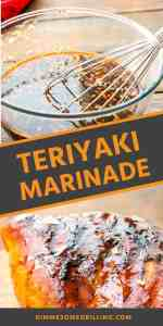 TERIYAKI MARINADE RECIPE Pins