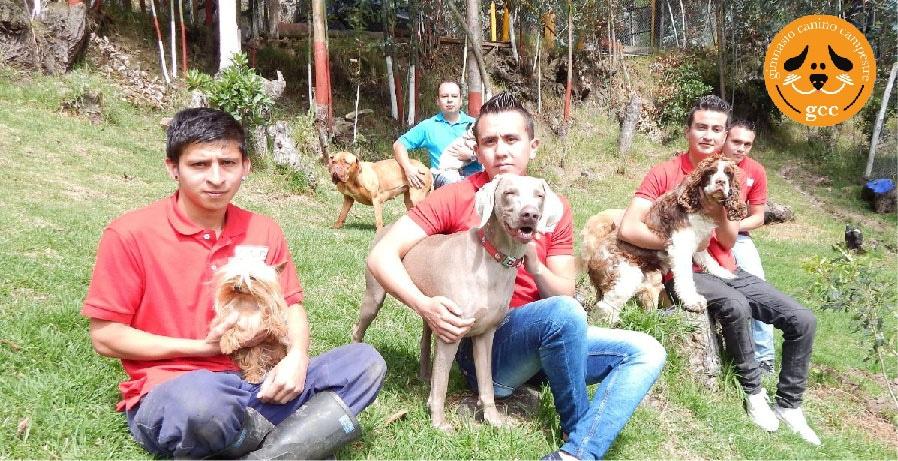 Guardería canina Cajicá - Guardería canina Bogotá Norte
