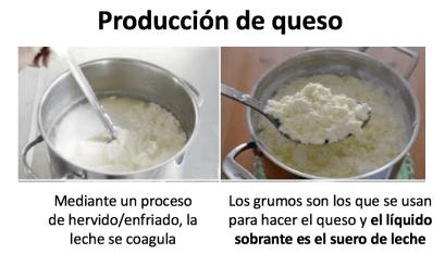 mejores proteinas - suero leche