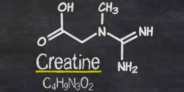 creatina monohidratada - pizarra