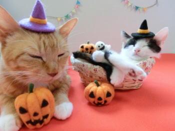 はかわいい猫もハロウィン