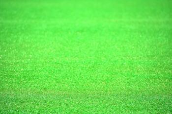 ベランダに人工芝を敷くとデメリットが!?ベランダにカビが発生する!?