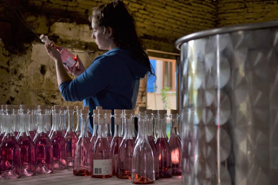 Bottles of Saint Amans Gin