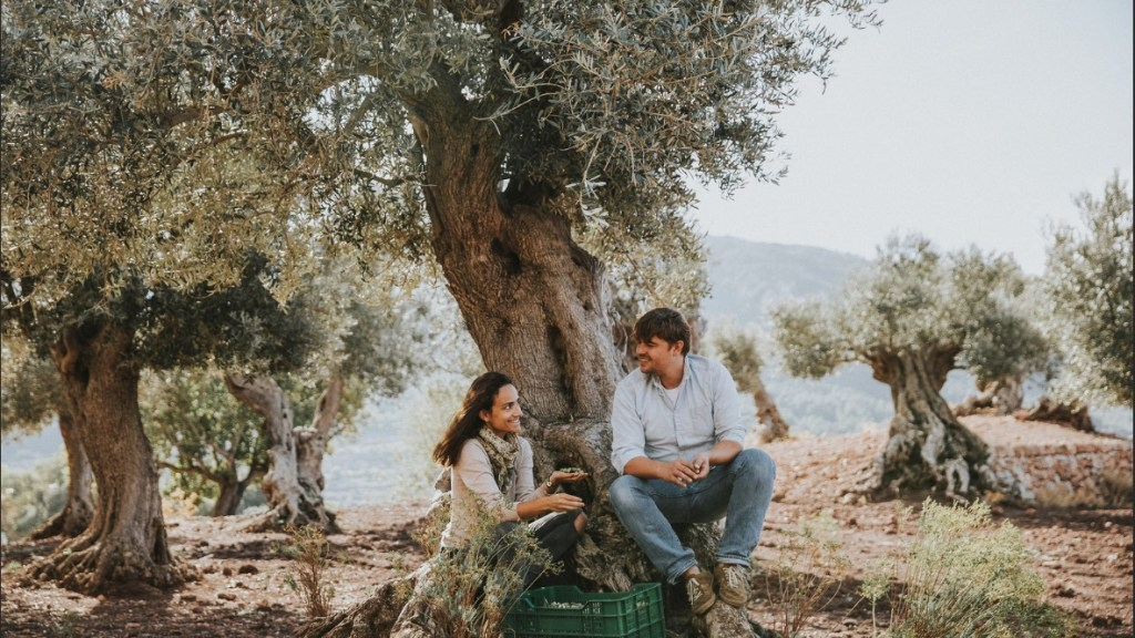 Eva and Stefan in Mallorca olive groves