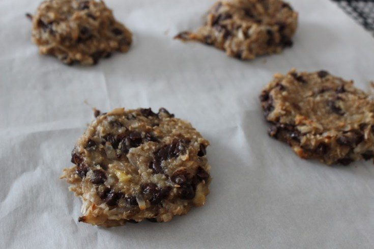 2 Ingredient Eggless Cookies with Chocolate Chips & Coconut