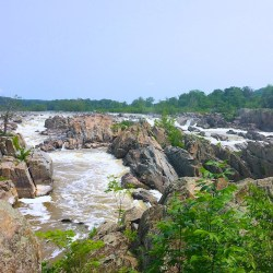 Hiking in Great Falls, Virginia