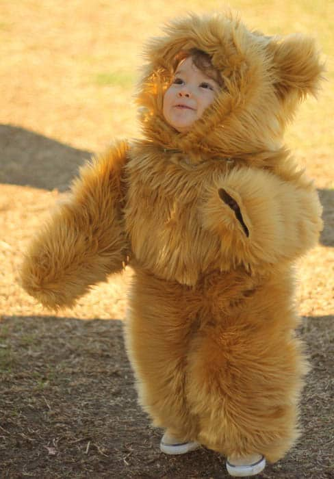 Handmade toddler teddy Bear halloween Costume